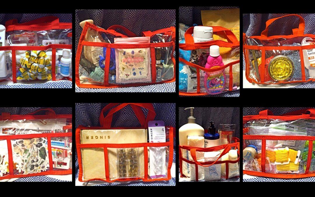 Dollar Tree Lady's Plastic Bags: